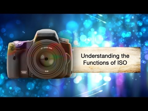 What Does ISO Mean? || Shraddha Kadakia