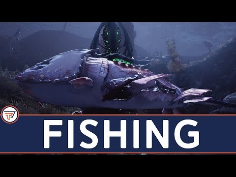 Warframe: BEST Ostron Reputation, Fishing Guide, Where To Catch All The Fish!