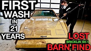 Most Disgusting Car Ever! Barn Find First Wash in 24 Years: Lost Bricklin SV1