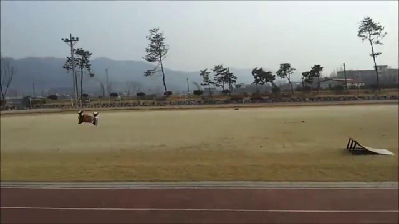 CRAZY RC] amazing rc car jump 엄청난 알씨카 점프