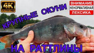 Рыбалка на КРУПНЫХ ОКУНЕЙ на раттлины