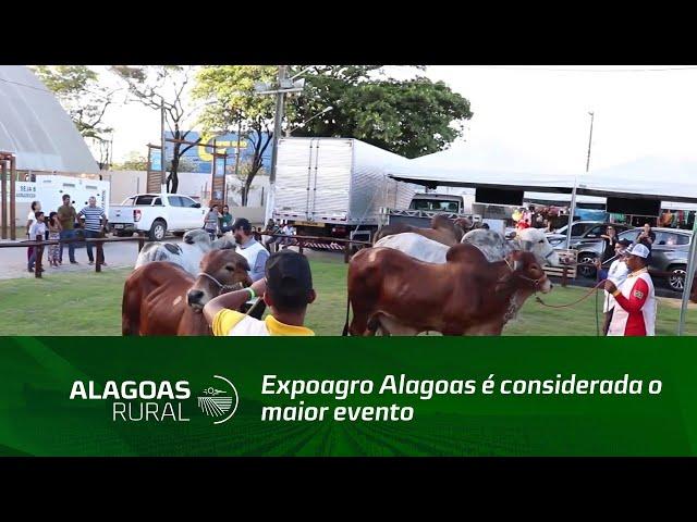 Expoagro Alagoas é considerada o maior evento agropecuário de 2019 no Norte e Nordeste