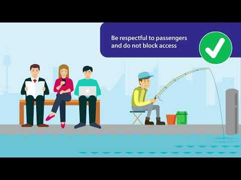 Recreational Fishing On Wharf Awareness Animation