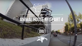 Animal House NYC - Part 4 - Affiliates, AM s and OG s