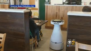 Restaurants Try Automated, Robotic Servers