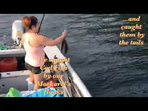 Come Explore The Ocean: Into The Great/Misty Weather, Mussel Picking And Caught Fish By The Tails
