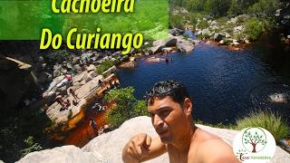 Natureza rara plantas e giro na Cachoeira Do Curiango, Itacambira