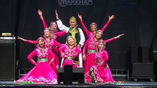 Markham, Global Fest, 20150716