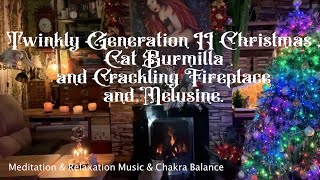 Twinkly Generation II Christmas, Cat Burmilla and Crackling Fireplace and Melusine, Calm Music.