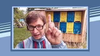 Uwes Bienengruß