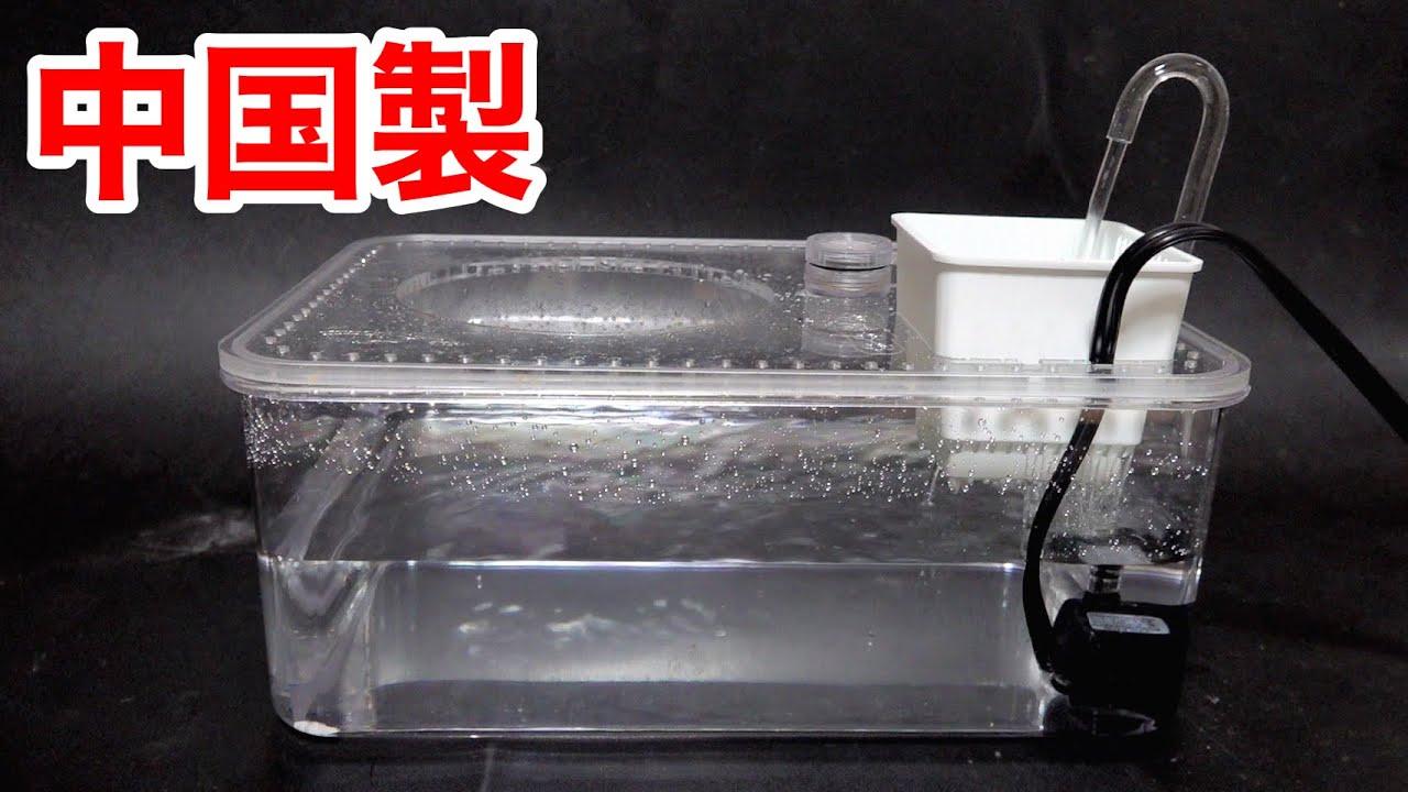 中国から亀飼育用の水槽を取り寄せた結果・・・