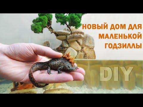 Такой аква террариум сможет сделать каждый. Оформление аквариума для тритона DIY.