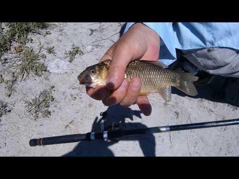 Рыбалка на озере около Севана