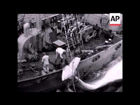 Whaling Story - NO SOUND - 1958