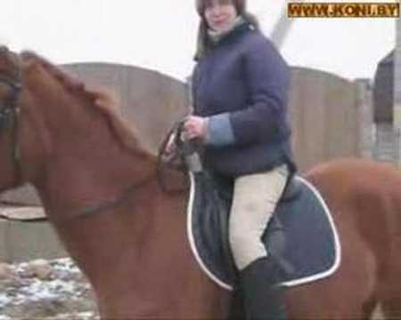 слова песни Детские песни - Три белых коня, текст песни