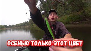 Закрытие рыболовного сезона Ловля щуки и окуня