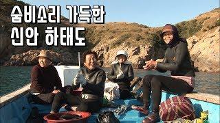 숨비소리 가득한 해녀의 섬, 신안 하태도 [Korea Island]