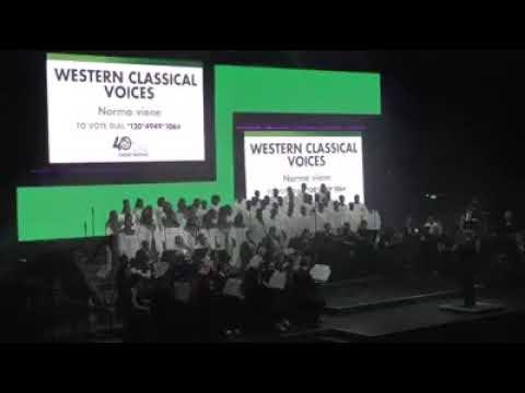 NCF 2017 Norma Viene WCV