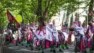 dance company REIKA組 ~ けやき並木通り会場 ~ けやきフェスタ 2019 よさこい in 府中