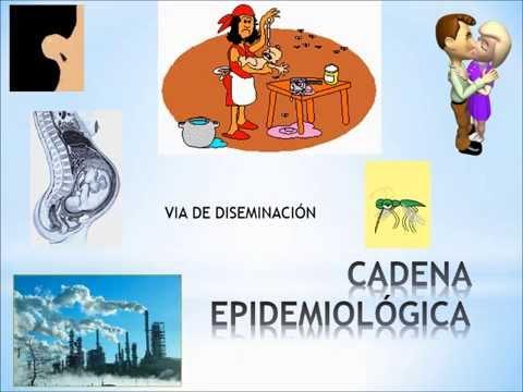 Concepto enfermedades transmisibles epidemiologia