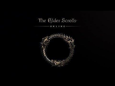 Elder Scrolls Online Witcher Build