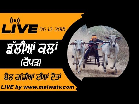 JHALLIAN KALAN / ਝੱਲੀਆਂ ਕਲਾਂ (Roper) OX RACES -2018 || LIVE STREAMED VIDEO ||