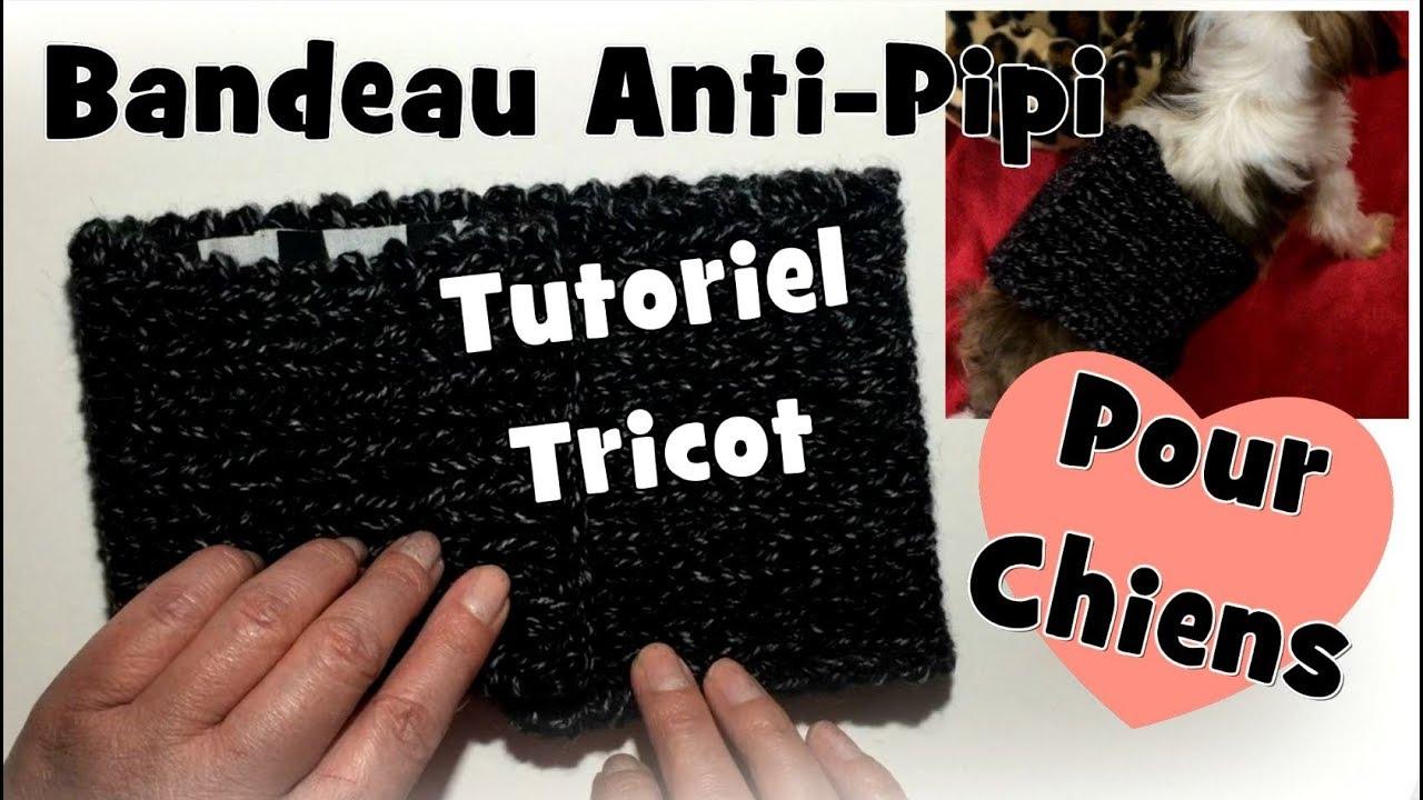 tutoriel tricot bandeau anti pipi pour chiens diy youtube. Black Bedroom Furniture Sets. Home Design Ideas