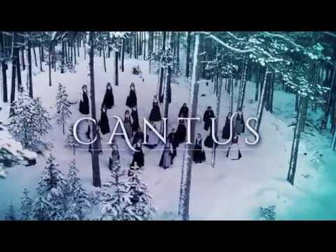 Cantus - Northern Lights