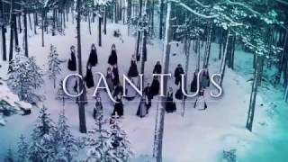 Baixar Cantus - Northern Lights