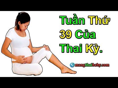 ✅ Sự Hình THành Và PhÁT Triển Của Thai Nhi Tuần Thứ 39 Của 3 Tháng Cuối Thai Kỳ | Mang Thai Tuần 39