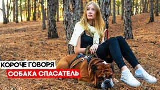Короче говоря, собака спасатель