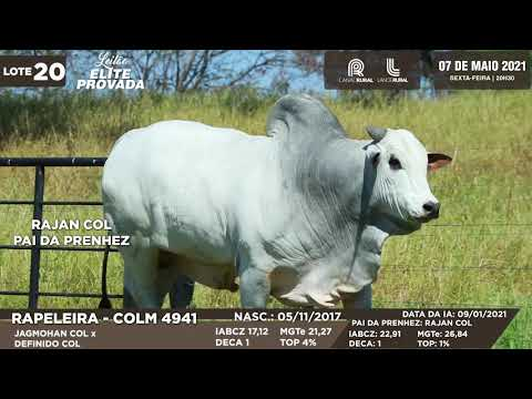 LOTE 20   COLM 4941