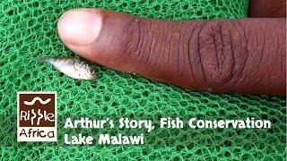 Arthur's Story - Fish Conservation Lake Malawi - RIPPLE Africa
