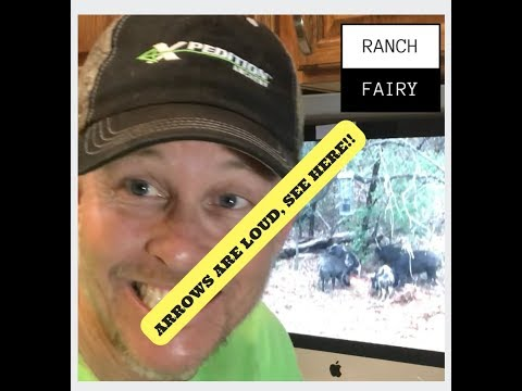 Fletching Noise And Animals Jumping The String L Ranch Fairy TEST LAB