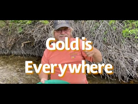 Gold in Nevada! Panning for Gold. Gold in the Campground. Do they know they have Gold in Camp?