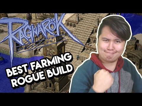 Ragnarok Online - Classic Best Build To Farm With Rogues - Ask Dee