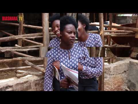 ASSOCIATION OF MICROFINANCE INSTITUTIONS - KENYA (AMFI) DOC FINAL