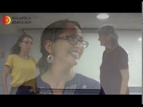 Testimonios Del Master Universitario De Terapia Transpersonal. Escuela De Atención