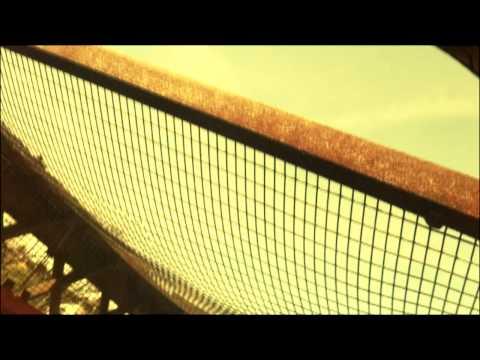 Telemachus - Ferndale Road (Abridged Video Version)
