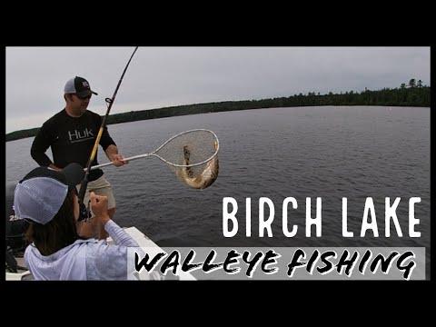 Northern Minnesota Walleye Fishing - Birch Lake 2020