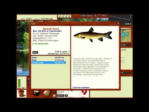 Ловля крупной рыбы на Озере в Русской рыбалке 3