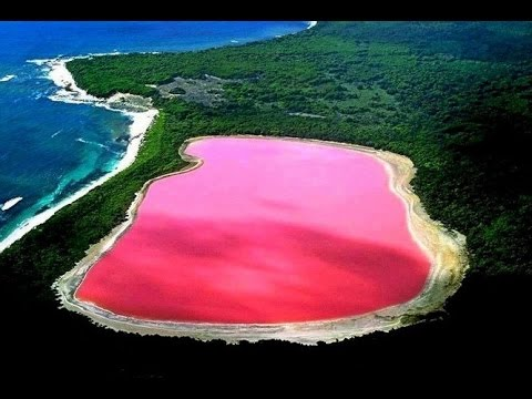 Lake Hillier Pink Western Australia S Most Bright Sight