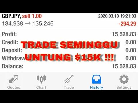 tips-untuk-new-trader-  -trader-beginner-  -$15k-profit-forex