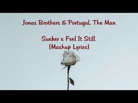 [Lyrics] Sucker x Feel It Still (Mashup) - Jonas Brothers x Portugal. The Man Mp3