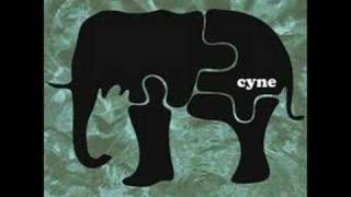 Cyne - Maintain