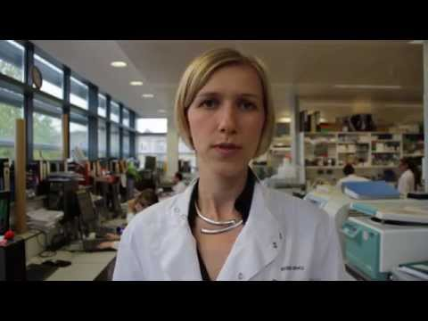 British Heart Foundation - Mending Broken Hearts, Lab Live