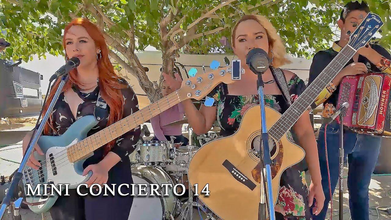 Mini Concierto | Ciega Locura, 30 Cartas, Bato Gacho, Juan Colorado (En Vivo)
