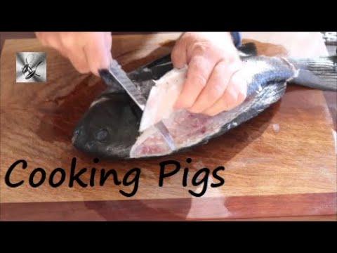 Deep Fried PIG Drummer In Panko Crumbs | Fishing & Cooking