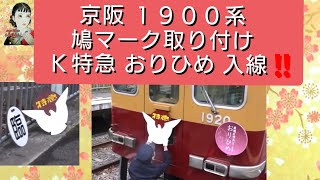 京阪 1900系 鳩マーク 取付!! K特急 おりひめ 入線!