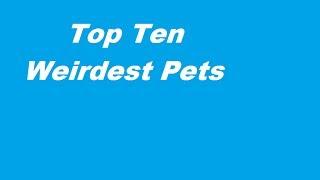Top Ten Weirdest Pets